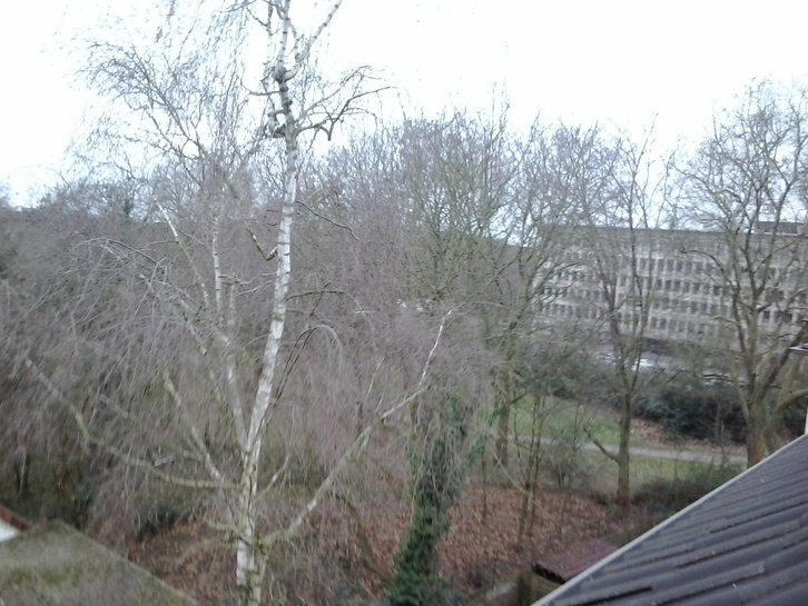 DG-Studio Wohnung  Duisburg Immobilien 4