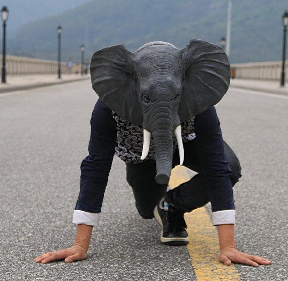 Elefanten Maske Elefantenmaske aus Latex Tiermaske Fasnacht Karneval Halloween Party  Kleidung & Accessoires