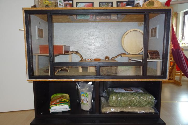 Hamstergehege Tiere 3