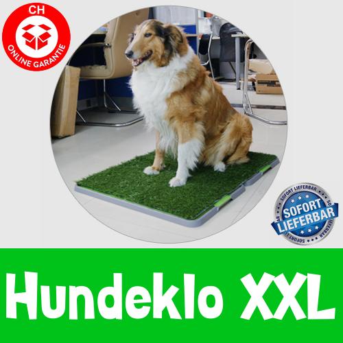 Hundetoilette Hundeklo Welpen Hunde Klo Wc Toilette Kunstgras Stubenrein 68x86cm XXL Grösse Stubenrein Tiere