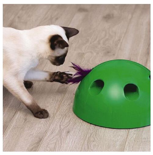 Pop' N Play Katzen Spielzeug Katzenspielzeug Indoor Zuhause Katze Feder Maus Spielzeug Unterhaltung TV Werbung Tiere 4
