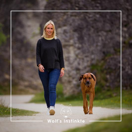 Wolf's Instinkte - Deine Hundeschule Tiere 2