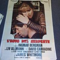 1977 Ingmar Bergman Das Schlangenei schweizer Groß Plakat