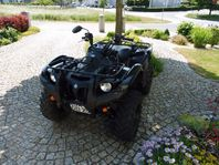 Yamaha Grizzly ATV EFI 550ccm
